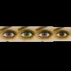Freshlook One-Day Colors (10) kontaktlinser från www.interlinser.se